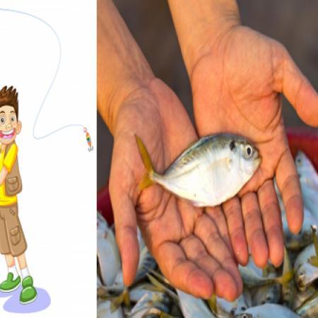 A Fishy Fact
