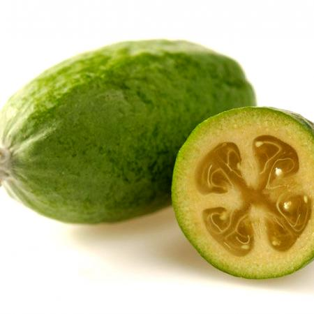 Feijoa Hortresearch