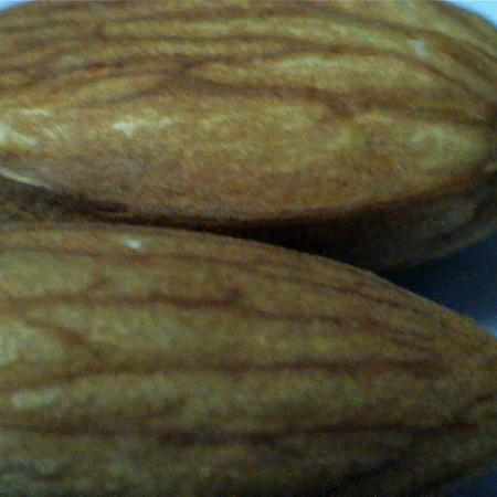 Almonds Brown