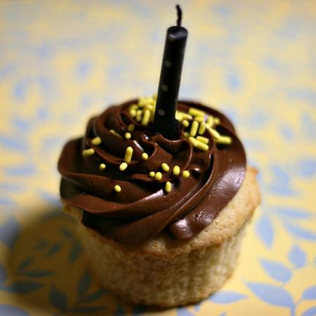 vanilla cupcakes with whipped chocolate ganache frosting