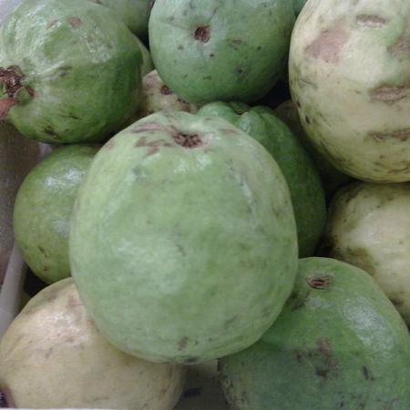 Pakistani Guava