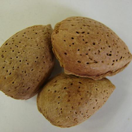 Amygdalae dulcis semen