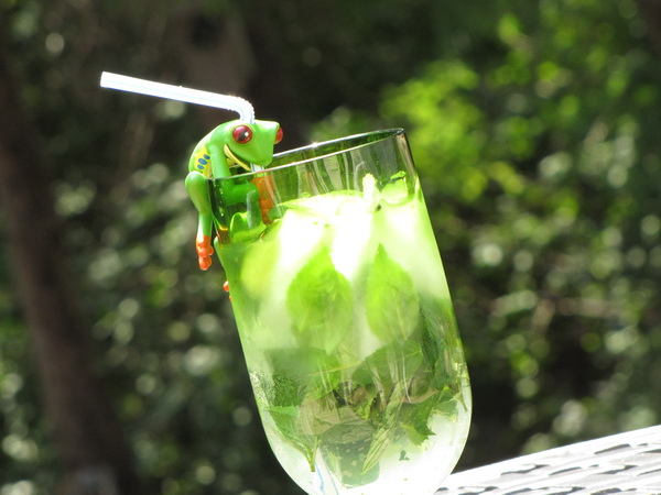 VIRGIN MOJITO  picture